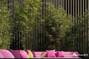 Maxtree -18卷 植物 竹子【模型】【高级群】