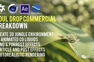精油广告的逼真水滴滑落-创建逼真的CG森林-Cinema 4D和Octane【教程】
