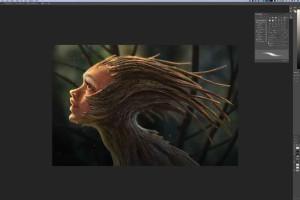 PS绘画森林里隐藏的生物【CreatureArtTeacher- Hidden Creatures of the Forest】【教程】