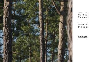 C4D植物 树木【Vertex Trees - Scots Pine Bundle】【模型】