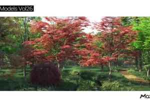 23个春秋树木模型【MT Plant Models 26】【模型】
