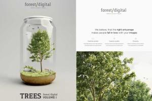 5K 绿色植物图片素材【Forest Digital - Vol.1-5】