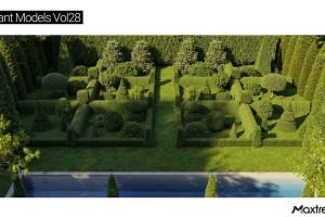 灌木植物模型【MAXTREE - Plant Models Vol. 28】